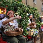 Festa del Vino Paliano